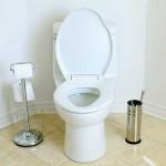 محلول لوله باز کن توالت